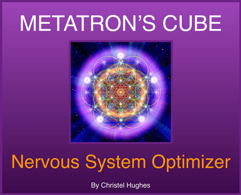 Nervous System Optimizer